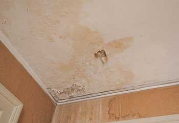 Residential Mold Remediation Near Eagle Rock | Drywall Repair & Remodeling Los Angeles